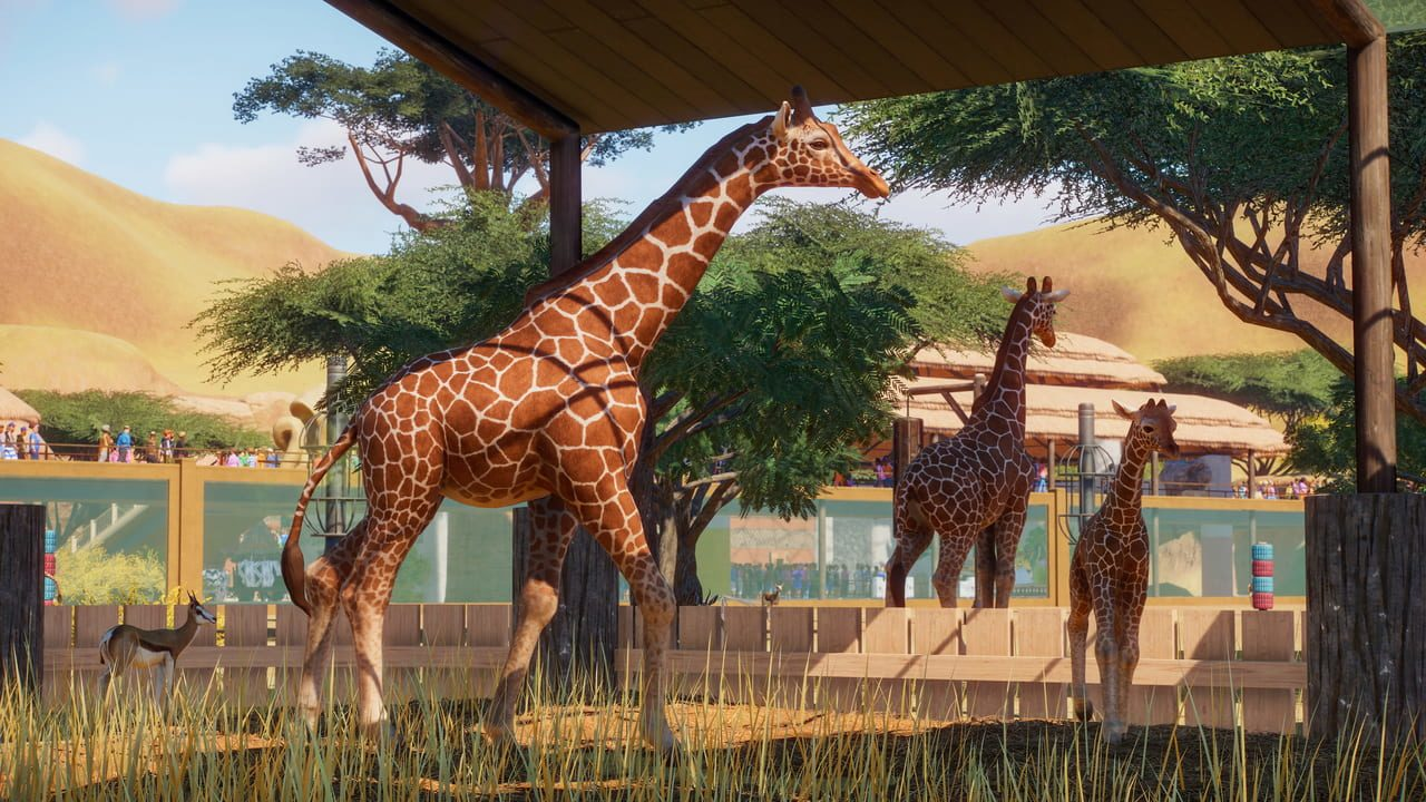 Screenshots von Planet Zoo